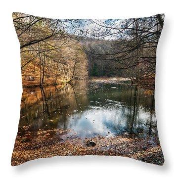 Seven Lakes Throw Pillow
