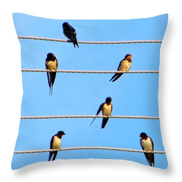 Throw Pillow featuring the photograph Seven Swallows by Ana Maria Edulescu