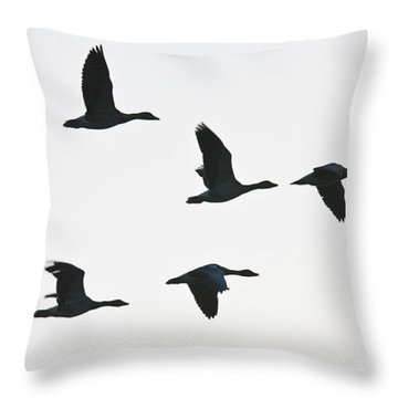 Sevenfold Geese Throw Pillow