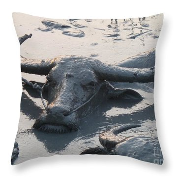 Throw Pillow featuring the photograph Several Water Buffalos Wallowing In A Mud Hole In Asia - Closer by Jason Rosette