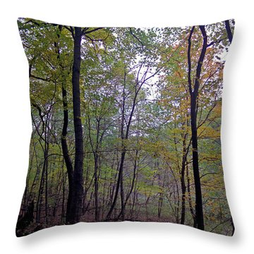 Severson Throw Pillow