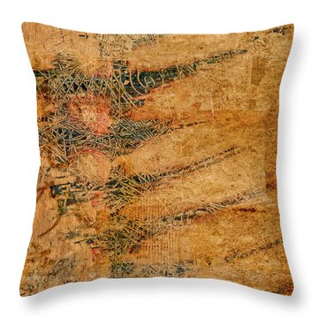 Throw Pillow featuring the photograph Sgraffito by Carol Leigh