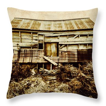 Shabby Country Cottage Throw Pillow