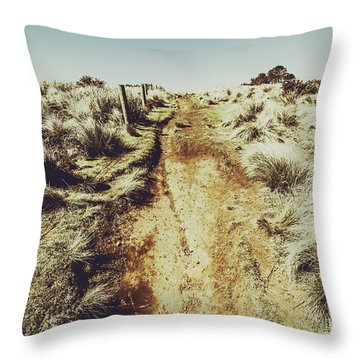 Shabby Outback Path Throw Pillow