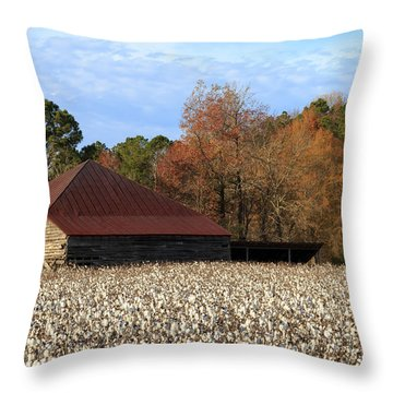 Shack In The Field Throw Pillow