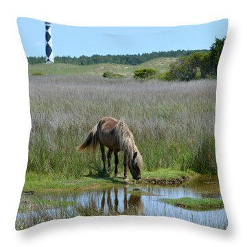 Shackleford Pony Throw Pillow