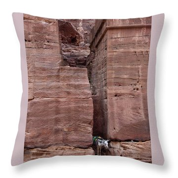 Throw Pillow featuring the photograph Shade Is Good by Mae Wertz