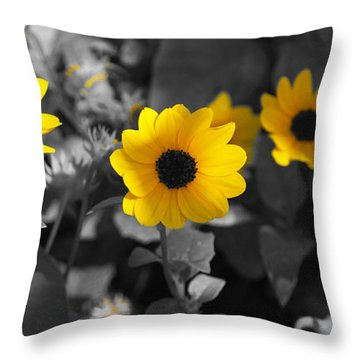 Shaded Daisies Throw Pillow