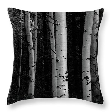 Throw Pillow featuring the photograph Shades Of A Forest by James BO Insogna