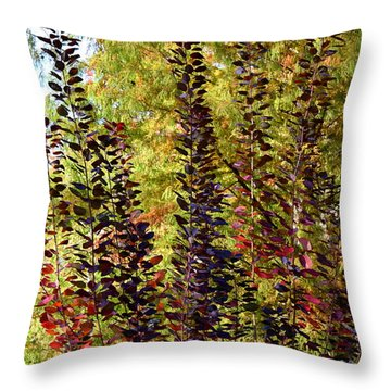 Shades Of Fall Throw Pillow by Deborah  Crew-Johnson