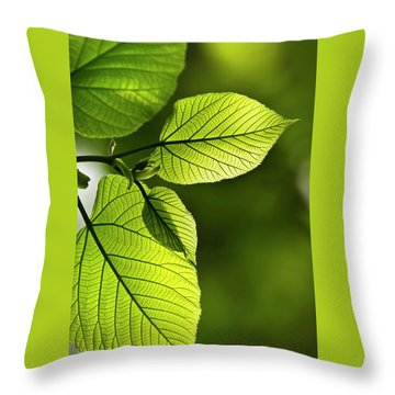 Shades Of Green Throw Pillow by Christina Rollo