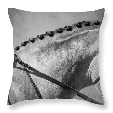 Shades Of Grey Fine Art Horse Photography Throw Pillow