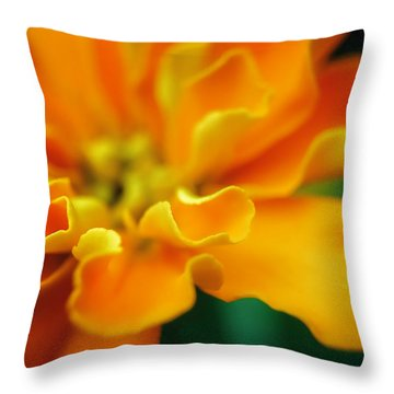 Throw Pillow featuring the photograph Shades Of Orange by Eduard Moldoveanu