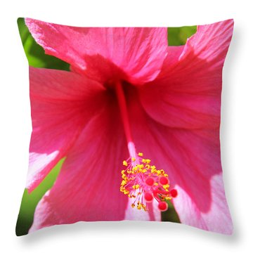 Shades Of Pink - Hibiscus Throw Pillow by Kerri Ligatich