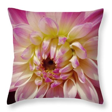 Shades Of Pink Throw Pillow
