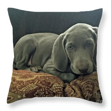 Shadow 2 Throw Pillow