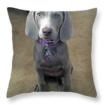 Shadow 3 Throw Pillow