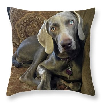 Shadow 4 Throw Pillow