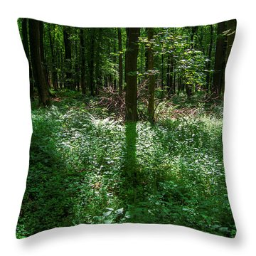 Shadow And Light In A Forest Throw Pillow