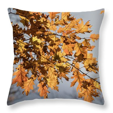 Shadow And Light - Throw Pillow