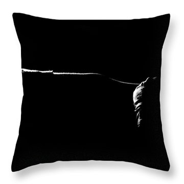 Shadow Boxing Throw Pillow by Scott Sawyer