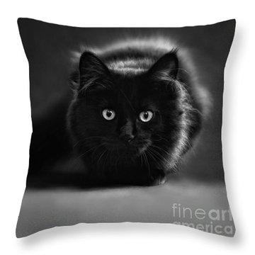 Shadow Cat 2 Throw Pillow