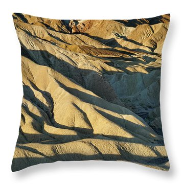 Shadow Delight Throw Pillow