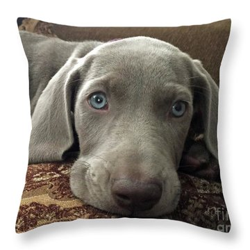 Shadow Throw Pillow