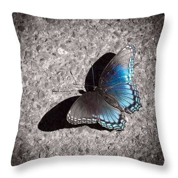 Shadow Games Throw Pillow