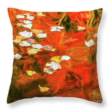 Shadow Of The Red Dragon Throw Pillow