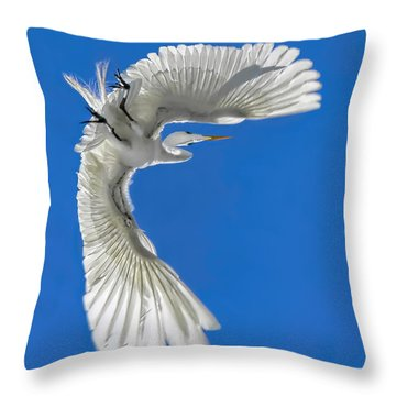 Shadow On A Wing Throw Pillow by Jennie Breeze