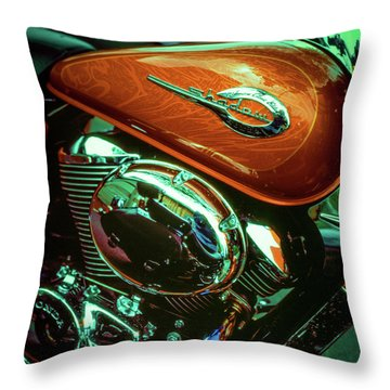 Throw Pillow featuring the photograph Shadow by Samuel M Purvis III