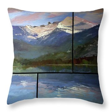 Shadow Side Of Winter Throw Pillow
