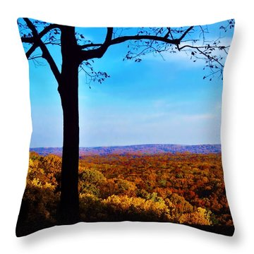Shadow To Light Throw Pillow