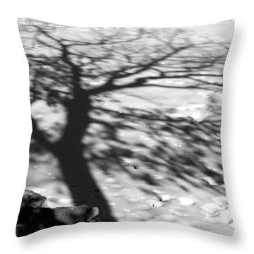 Shadow Tree  Herrick Lake  Naperville Illinois Throw Pillow