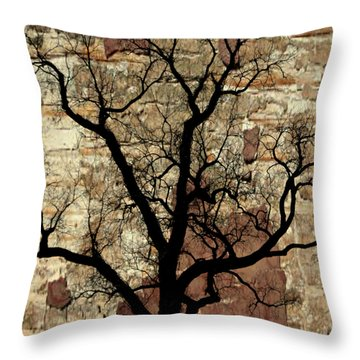 Shadow Wall Throw Pillow by Marty Koch