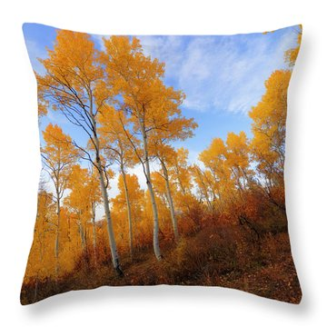 Shadowed Hill Throw Pillow