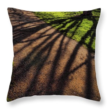 Shadows 2 Throw Pillow by John Bushnell