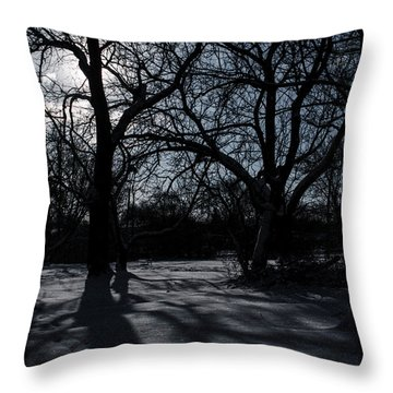 Shadows In January Snow Throw Pillow