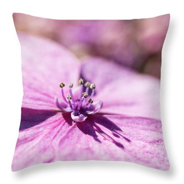 Shadows In Pink Throw Pillow