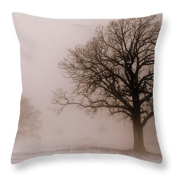 Shadows In The Fog Throw Pillow by Linda Mishler