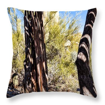Shadows In The Hot Desert Throw Pillow by Lawrence Burry
