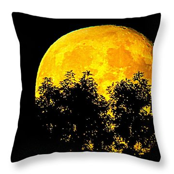 Shadows In The Moon Throw Pillow