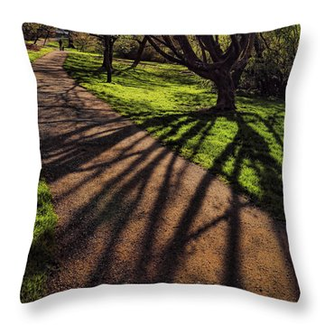 Shadows Throw Pillow by John Bushnell