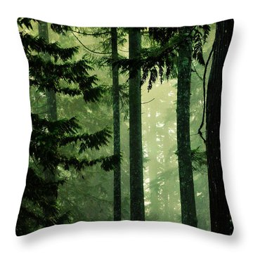 Shadows Of Light Throw Pillow