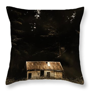 Shadows Of Mornings First Light Throw Pillow