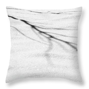 Shadows Of Winter Throw Pillow by Christine Till