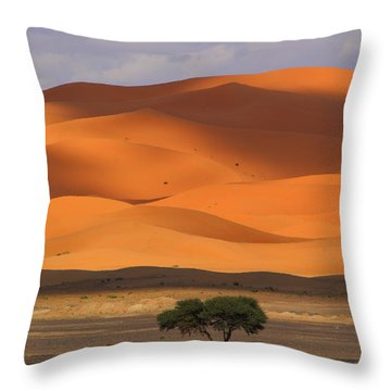 Throw Pillow featuring the photograph Shadows On The Dunes by Ramona Johnston