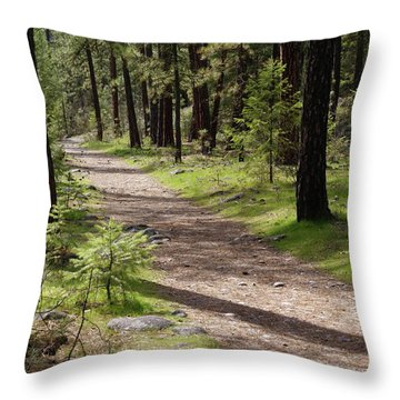 Throw Pillow featuring the photograph Shadows On The Path by Ben Upham III