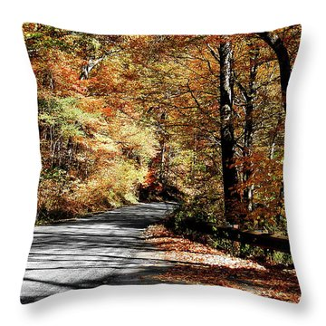 Shadows On The Road Throw Pillow